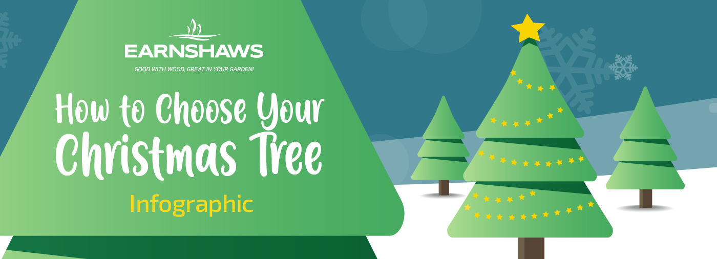 A Guide to Choosing the Right Christmas Tree