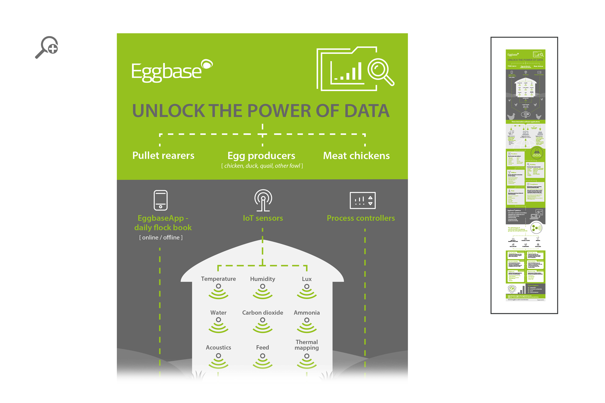 Eggbase Infographic